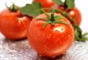 Mẹo chọn và cách bảo quản cà chua