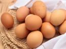 Cách bảo quản trứng trong mùa hè