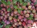 Lợi và hại khi ăn quả mận