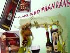 Về Ninh Thuận thưởng thức rượu nho đậm đà hương vị biển