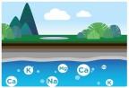 Tại sao phải phân biệt nước khoáng với nước tinh khiết?