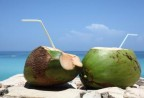 Thực phẩm chống say nắng