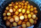 Đặc sản độc đáo Trung Quốc: trứng luộc nước tiểu bé trai