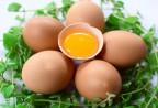 Những bài thuốc chữa bệnh từ trứng gà bạn cần biết