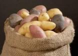 4 người chết vì ngộ độc khí từ khoai tây thối