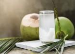 Nước dừa - đồ uống không thể bỏ qua trong mùa hè
