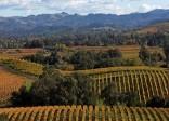 Du lịch nước Pháp thăm vùng sản xuất rượu vang