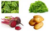Chất Nitrate trong thực phẩm