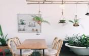 5 quán cà phê xanh mát giữa lòng Sài Gòn