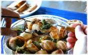 Ở Việt Nam, ốc sên không ai ăn nhưng ở Pháp đây lại là đặc sản đắt tiền