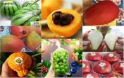 Người Việt mạnh tay chi tiền triệu mua trái cây Nhật Bản