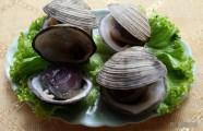 Ngán Hạ Long và những món ăn ngon không thể chối từ