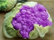 Trẻ hóa làn da với thực phẩm màu tím