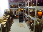 Căn phòng tràn ngập rượu quý và công nghệ chế biến tiên tửu