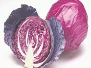 Rau cải bắp - món ngon chữa được nhiều loại bệnh