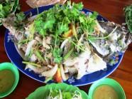 Về Phú Yên ăn cá mú