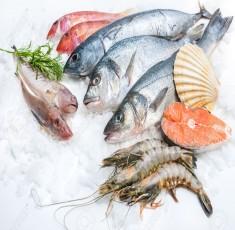 Bật mí 9 món cá tai hại mà bạn không nên thưởng thức
