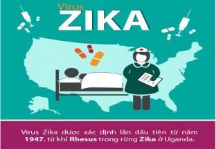 [Infographic] Những điều người Việt phải biết về virus 'ăn não' Zika