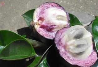 Những trái cây tưởng giải nhiệt mà lại gây nóng trong