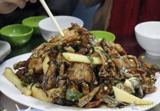 Ngày mưa đi tìm quán lẩu ếch ngon ở Hà Nội