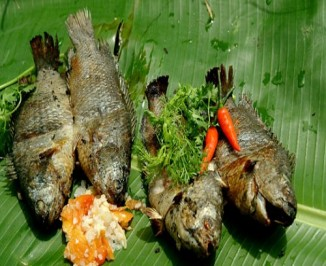 Cá rô chính là tiên dược cho sức khoẻ mà chẳng mấy ai biết