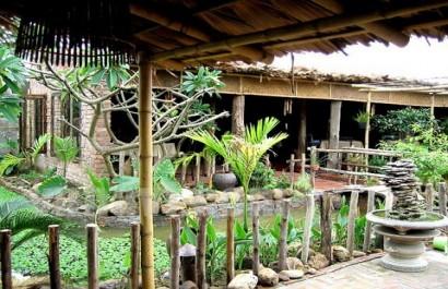 Nhà hàng Ngô Đồng