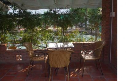 Cafe Phê Nắng Xuân