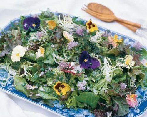 Chọn hoa làm thực phẩm thế nào cho đúng cách?