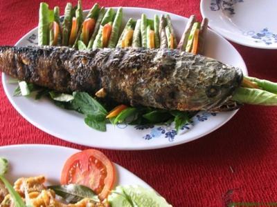 Cá Lóc Miền Nam