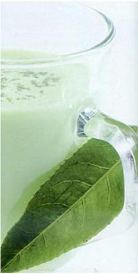 Cách pha chế Trà xanh sữa nóng