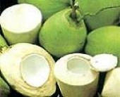 Sinh tố rau má và nước dừa giải nhiệt cuộc sống