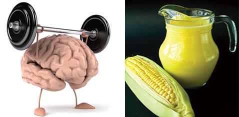 Sữa ngô có tác dụng tốt với não bộ