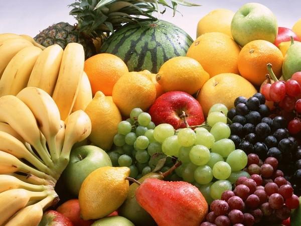Các loại hoa quả khác