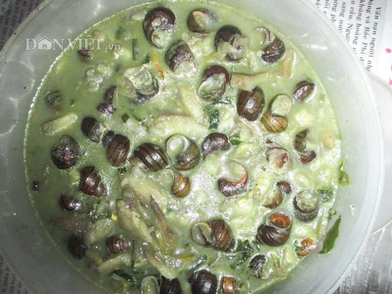 Món ốc quắn nấu chuối