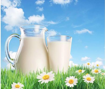 Sữa tươi đã tiệt trùng