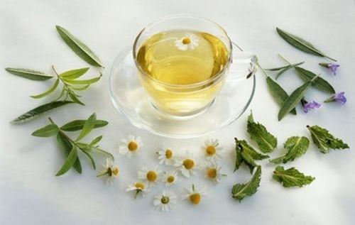 Hoàng kỳ táo khương trà