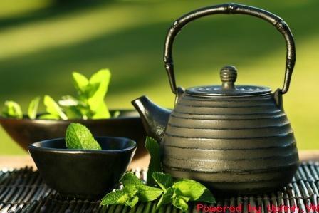 Độc sâm trà