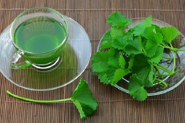 Sinh tố rau má – Thức uống lý tưởng cho ngày hè nóng nực1