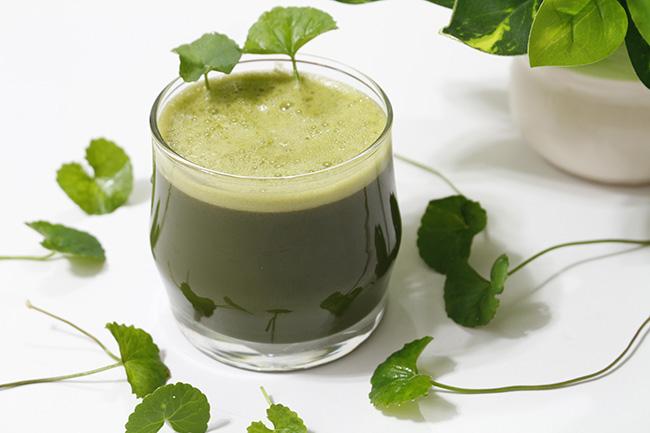 Sinh tố rau má – Thức uống lý tưởng cho ngày hè nóng nực2
