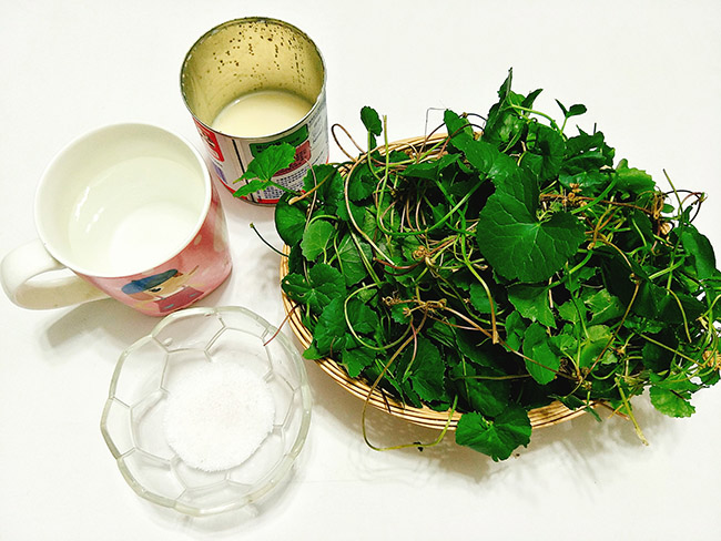 Sinh tố rau má – Thức uống lý tưởng cho ngày hè nóng nực3