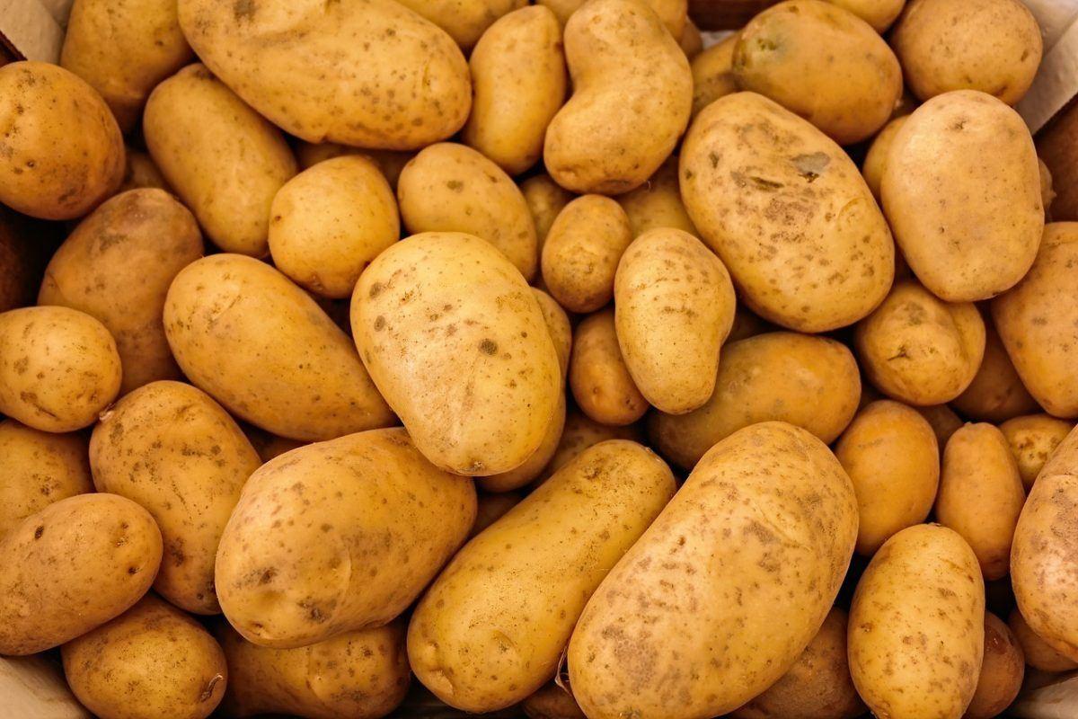 TỔNG HỢP 12 loại rau củ có nhiều thuốc trừ sâu nhất năm 201811