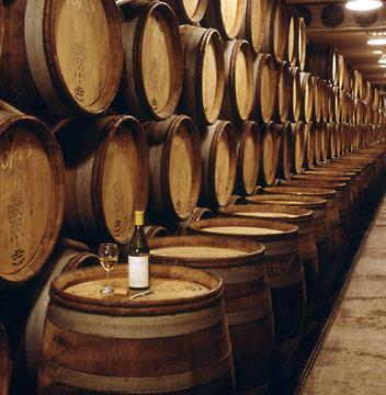 khám phá quy trình sản xuất rượu vang