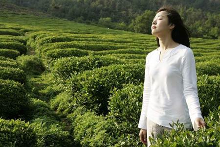 Khi trà xanh là thần dược, Làm đẹp, lam dep voi tra xanh, duong da mua he,