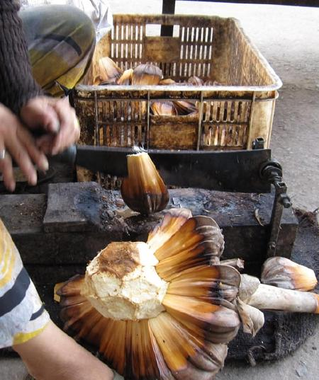 Mứt dẻo dừa nước, món Tết miền Cửu Long