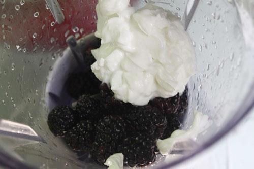 Trộn dâu tằm với sữa chua, sữa đặc xay nhuyễn.