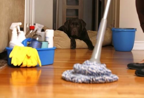 6 chiêu dọn nhà cực sạch chuẩn bị đón Tết - Archi