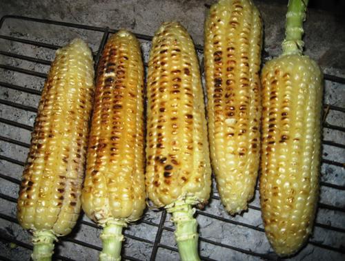Những trái bắp được nướng vàng ươm trên bếp than.