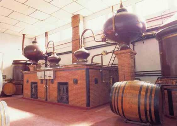 Thú sưu tầm rượu mini rượu mẫu - 1