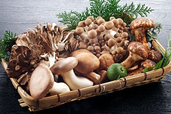 Nấm có tác dụng giúp tăng cường sức khỏe tim vì chúng có chứa vitamin B1 và B6