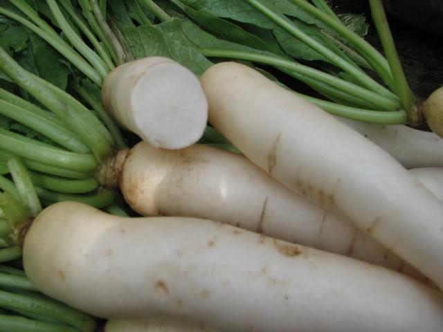 củ cải